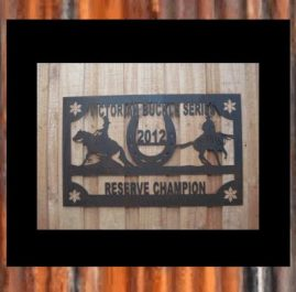 Reining Horse Trophy Wall Plaque.  Raw rust $140