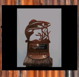 Fish Trophy, rustic. $60